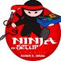 Ninja do Setup