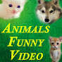 Funnyplox Videos