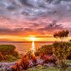 Naturaleza Viva - Sonidos y Paisajes Increíbles