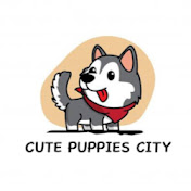 Cute Puppies City