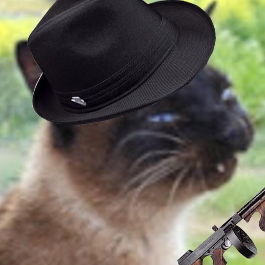 Кот спецагент картинки