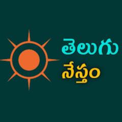 Telugu Nestham