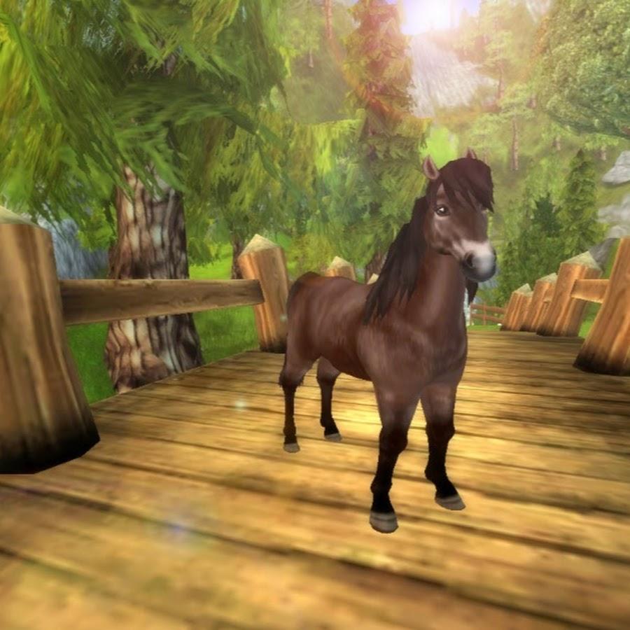 Фото стар стейбл лошади