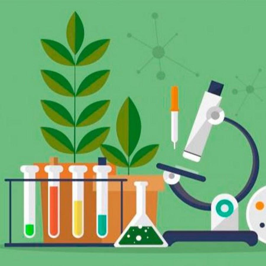 Химия и биология картинка