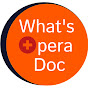 What's Opera Doc - For Professional Opera Singers