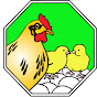 Arab Qatari CO. For Poultry Production