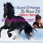 Atların Sesi