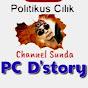 PC D'STORY
