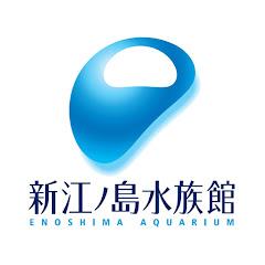 新江ノ島水族館公式チャンネル