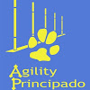 Agility Principado