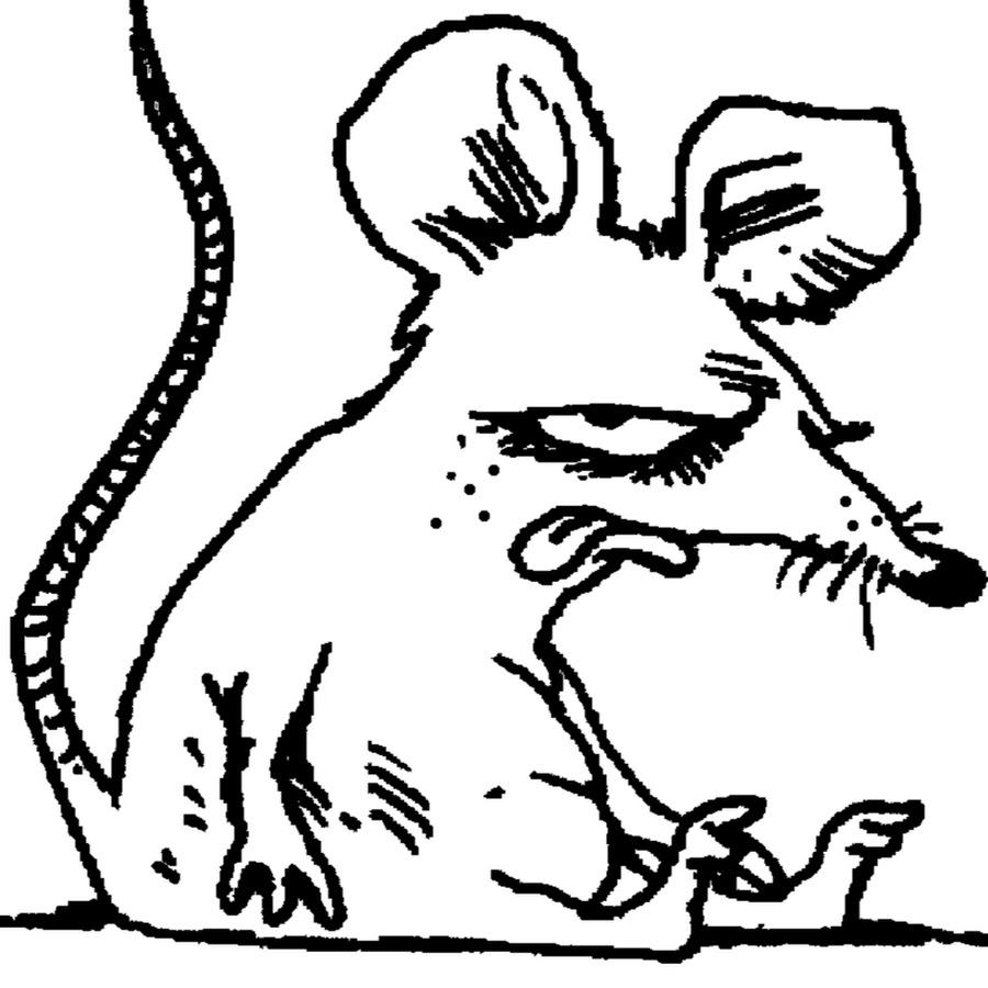 внешнего картинки с мышью прикольные черно-белые шотландского