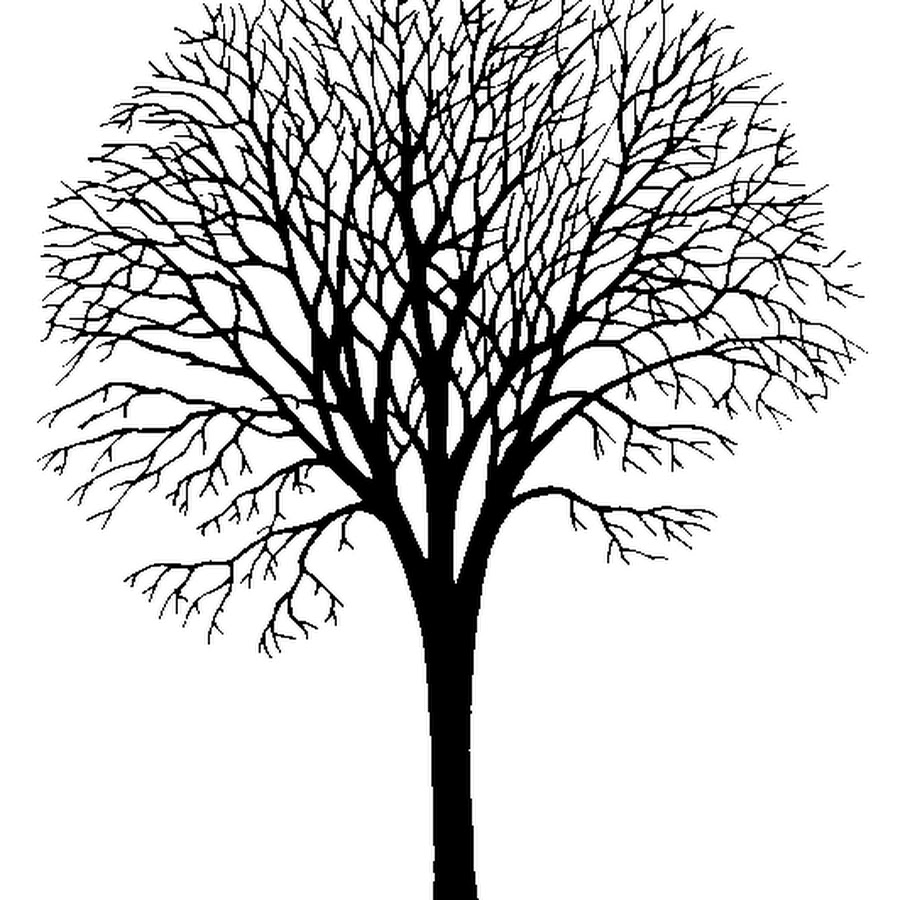 Черное дерево рисунок