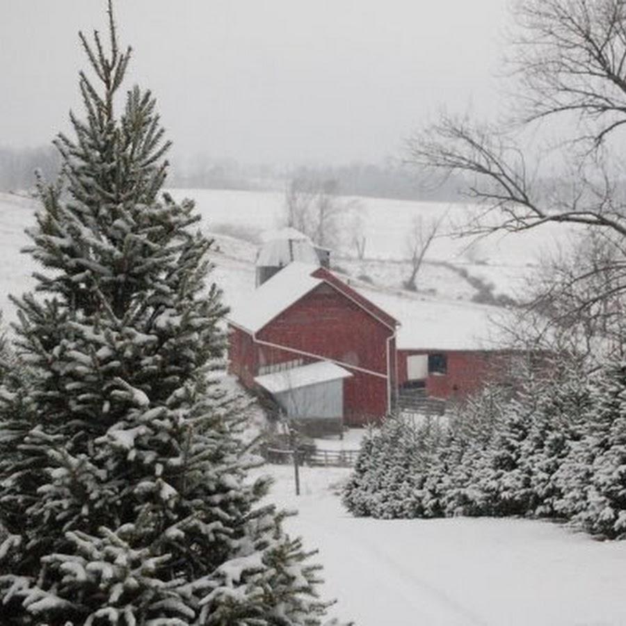 Snickers Gap Christmas Tree Farm - YouTube