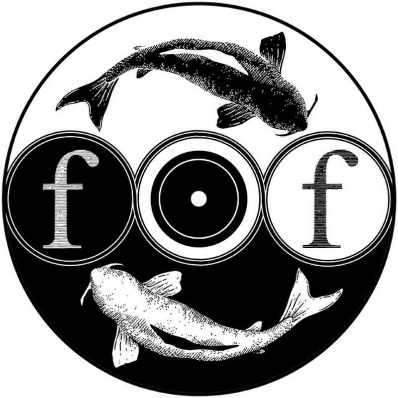 Foolish Fish