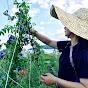花蓮豐禾自然生態農場