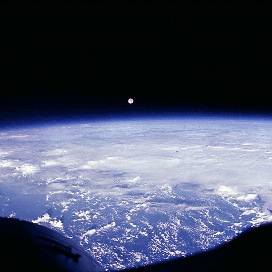 первое фото земли из космоса собаками санкт-петербурге