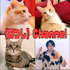 《あつし》Channel