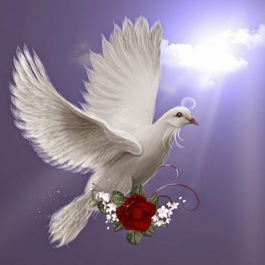Поздравление сизая голубка на юбилей