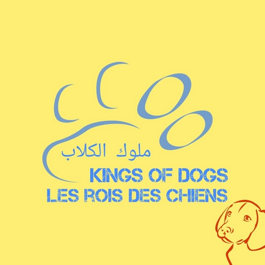 Kings of Dogs