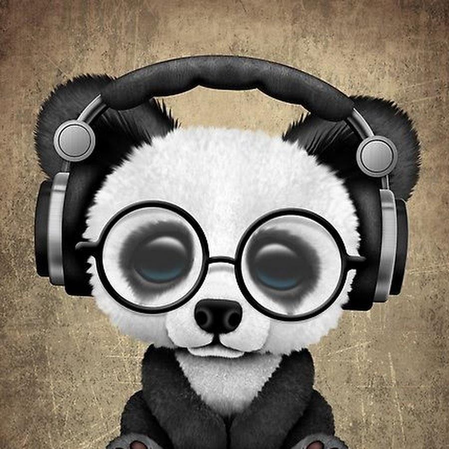 такое картинки панда в очках и наушниках знаете, что делать