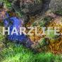 harzlife_tv