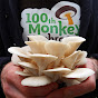 100thMonkeyMushrooms