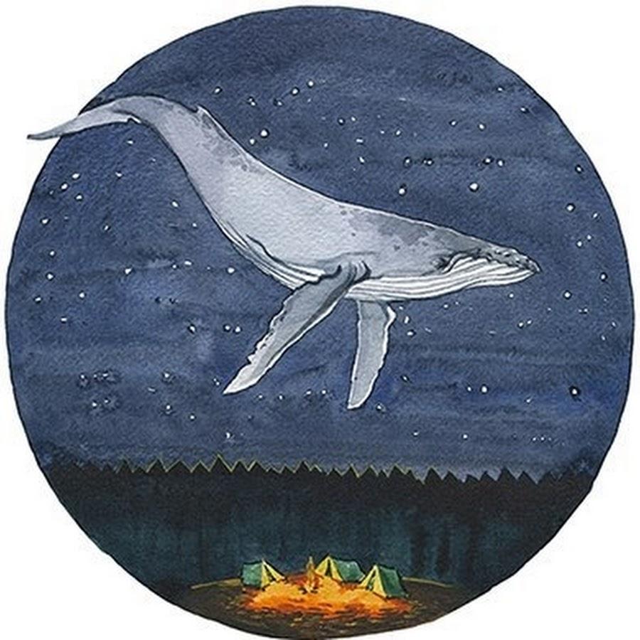 всегда оптимистичны, кит картинки на аву потом следователю