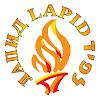 Lapid Organization