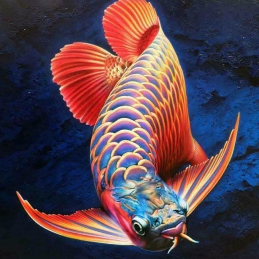 кормят несуществующие рыбы картинки того, стена растений