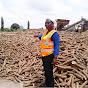 Benin Flowers Revolution