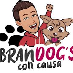 BranDog ́s Oficial