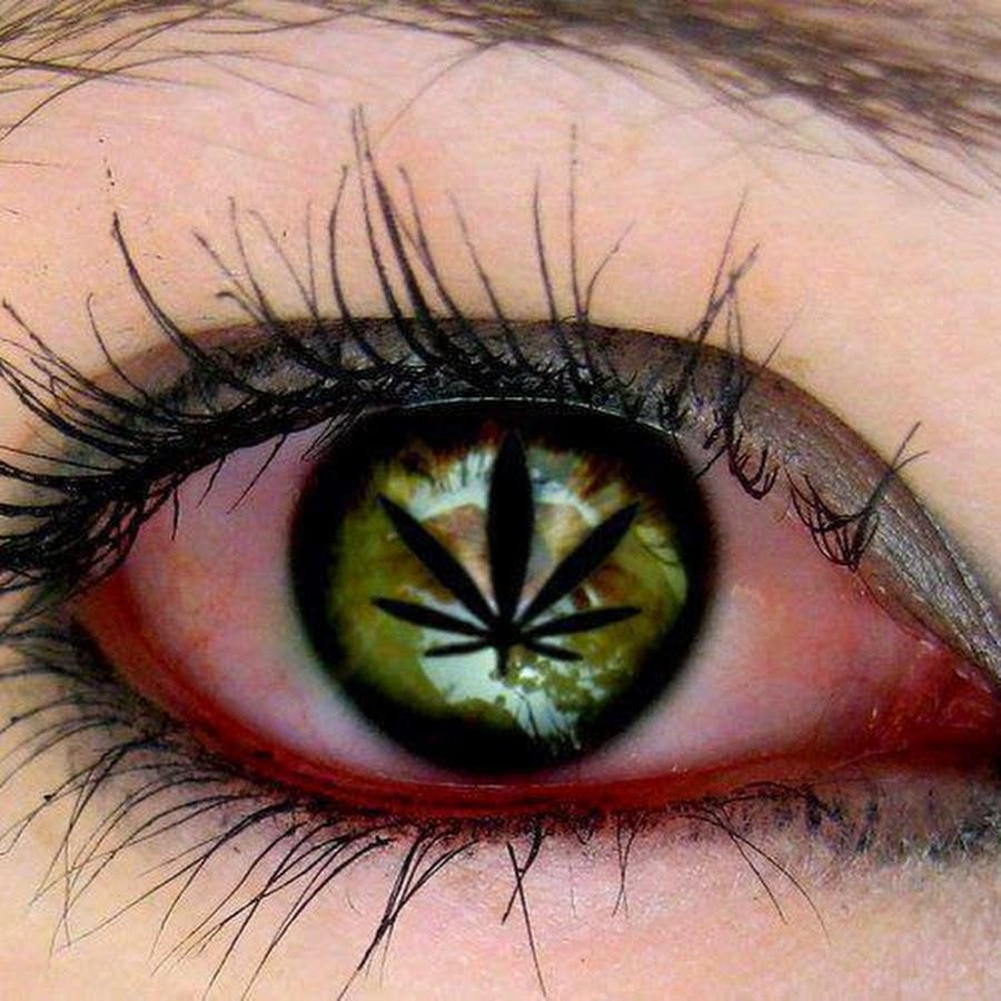 Конопля в глазах купить новосибирске марихуану в