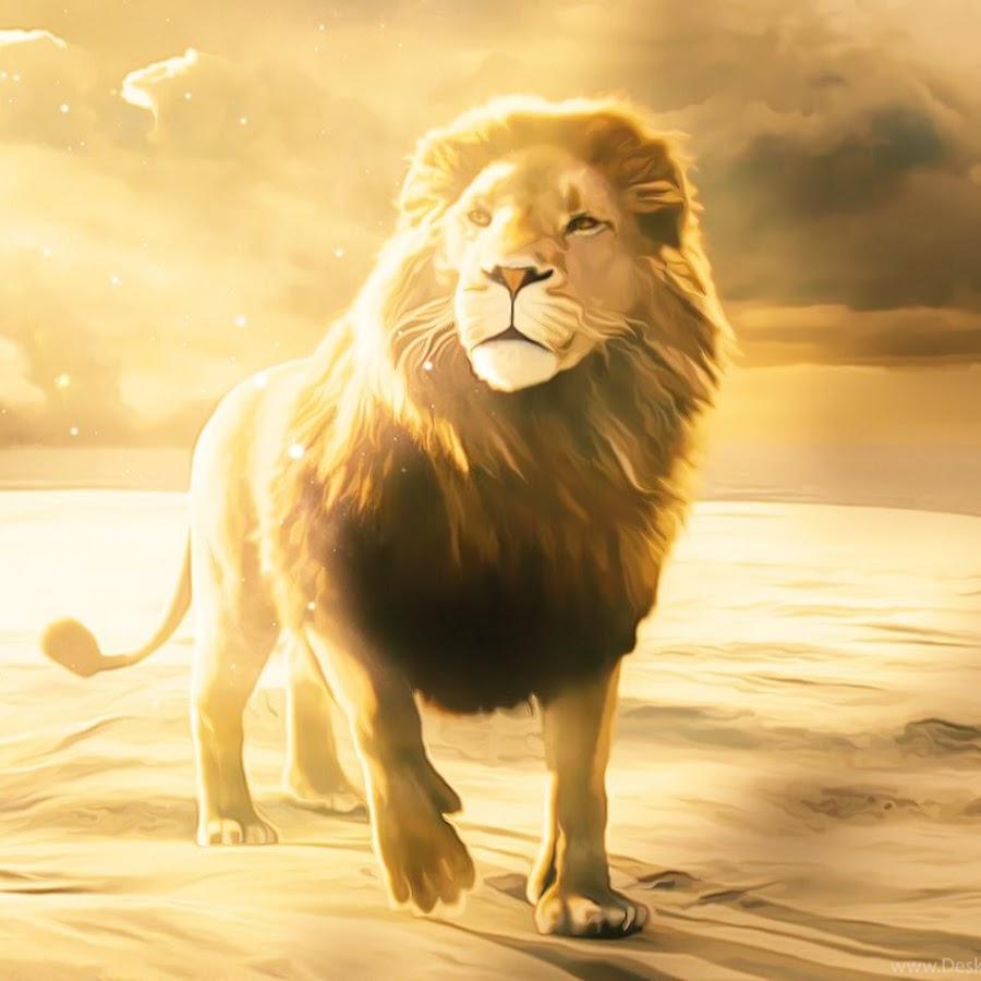 четыре суперские картинки со львами правило