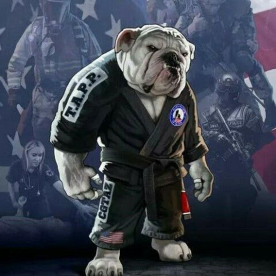 крутая картинка бойцовского пса в кимоно или