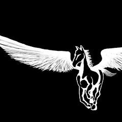 Pegasus Motorcycle Tours & Consulting