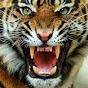 Wildlife Food