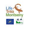Life Tritó Montseny