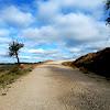 Trail Running Torre de las Arcas