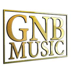 GNB Music Net Worth