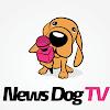 News Dog TV