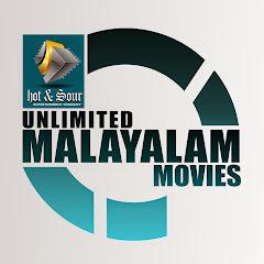 Malayalam movie channel Net Worth