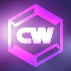 The Cosmic Wonder Net Worth