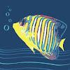 ABC Dive & Snorkel Port Douglas