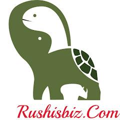 Rushisbiz Net Worth