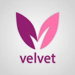 Cколько зарабатывают Velvet