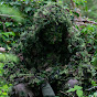 Sniper Airsoft Shadow