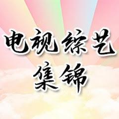 中国广东卫视官方频道China GuangdongTV Official Channel 【欢迎订阅】 Net Worth