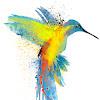Colourful Ecuador Travels