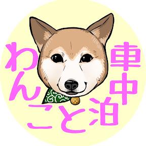 わんこと車中泊/car traveling with my dog YouTuber