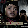 We Are All Rohingya Now